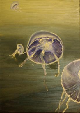 Meduses iv 55x38 copie